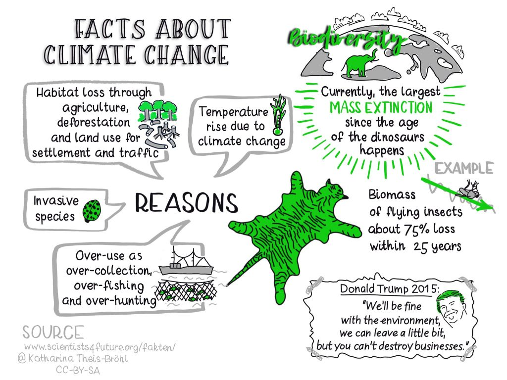 Facts about climate change - Biodiversity - Katahrina Theis-Bröhl - Scientists4Future